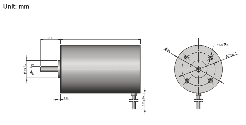 Brushless DC Motor R36BLDC dimensions