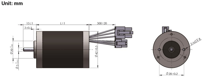 Brushless DC Motor R42BLDC dimensions